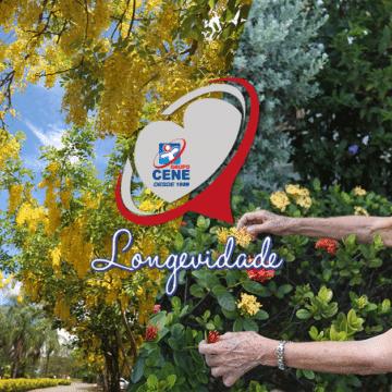 A arte de amar: Longevidade é tema da segunda edição da exposição