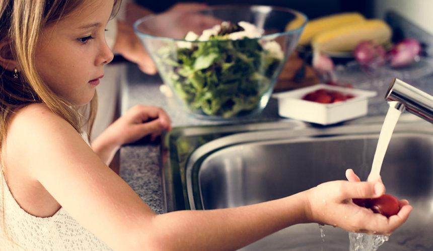 Entenda porque as altas temperaturas aumentam o risco de intoxicação alimentar