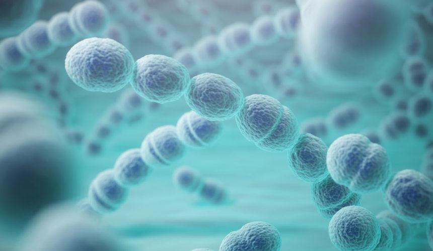 Pneumonias podem ser fatais, mas é possível prevenir a doença e diminuir sua gravidade