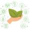 Meio Ambiente: sete dicas para você ajudar na redução dos impactos negativos